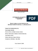 Ensayo Entorno Competitivo & Globalización C&C 06 February 2009
