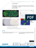 Mapeamento DuoScan (LabRam).pdf