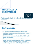 Charla Influenza 2013.pptx