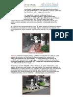 dicas_construir_calcada