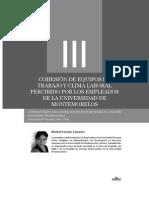 Dialnet-CohesionDeEquiposDeTrabajoYClimaLaboralPercibidoPo-4515329
