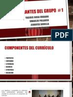 Componentes Del Currículo