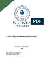 Ensayo Psicología Social