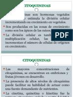 Citoquininas
