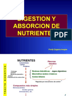 Digestion y Absorcion de Nutrientes