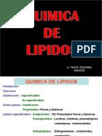 Quimica de Lipidos