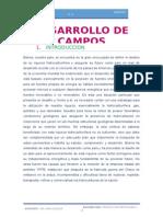 DESARROLLO-DE-CAMPOS2.docx