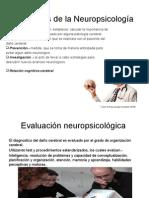 Funciones de La Neuropsicología