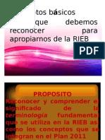 Rieb REFORMA.pptx