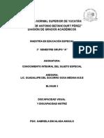 Disc.visualyDisc.motriz(Resumen)