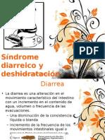 Sindrome Diarreico y Deshidratación