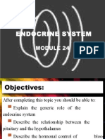 Endocrine System Module Ch.24