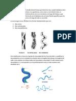 Resumen temas de sedimentología