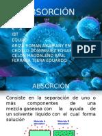 ABSORCIÓN-1.pptx