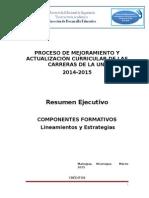 Conceptualización de Los Componentes Formativos
