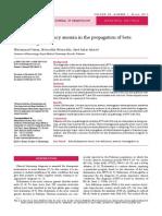 Basic Parameters in IDA