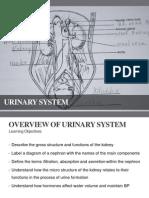 2.0 Urinary System