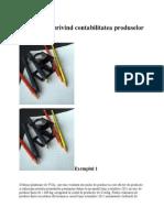 Monografie Productie Finita