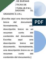 BPM mejorarPG.docx