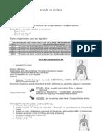 REVISÃO DOS SISTEMAS.pdf