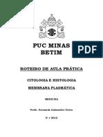 556383_MEMBRANA PLASMÁTICA.pdf
