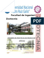 Manual Apícola (Cmzs)> apicultura