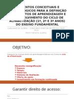 ELEMENTOS CONCEITUAIS E METODOLÓGICOS PARA A DEFINICAÇÃO DOS.pptx