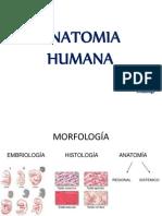 Generalidades Anatomicas y su posicion
