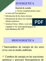 bioenergetica.ppt