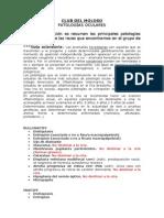 patologias_oculares
