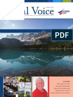 Local Voice and Financial Report Summer 2015