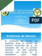 SINDROME DE HORNER