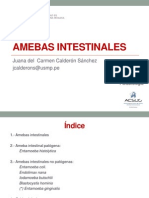 2015 - TEORIA 02 Amebas Intestinales Clase (1)