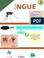 Dengue Casa Abierta (1)