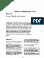 Formação Do Artista Plástico No Brasil – o Caso Da Escola de Belas Artes Carlos Zílio