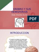 cerebro y sus hemisferios