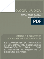diapositivas1tema_sociologíajuridica