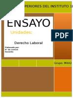 ENSAYO DANIELA LUNA.docx