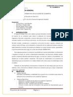 Informe Final Inversion (1)