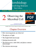 Microbiology Lecture 2