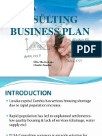Feasibility Study for Consultanct Company in Zambia