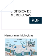 Biofisica de Membranas