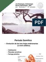 Citación 1-Fundamentos Del Desarrollo Embriológico. Cefalización Del Embrión