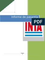 informe pasantia