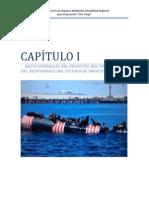 EIA  MINERIA SUBMARINA - DON DIEGO.pdf
