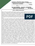 ATIVIDADE MUNDO DAS REDES.docx