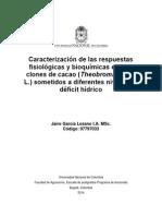 Respuestas Fisiológicas Cacao Deficit Hídrico