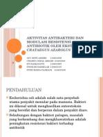 Aktivitas Antibakteri Dan Modulasi Resistensi Antibiotik