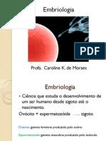 Introdução a Embrio, Ciclo Celular, Mitose e Meiose