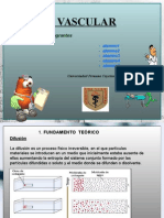 Proyecto Diseño Vascular